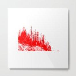 echos-21 Metal Print