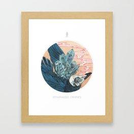 Stymphalides Framed Art Print
