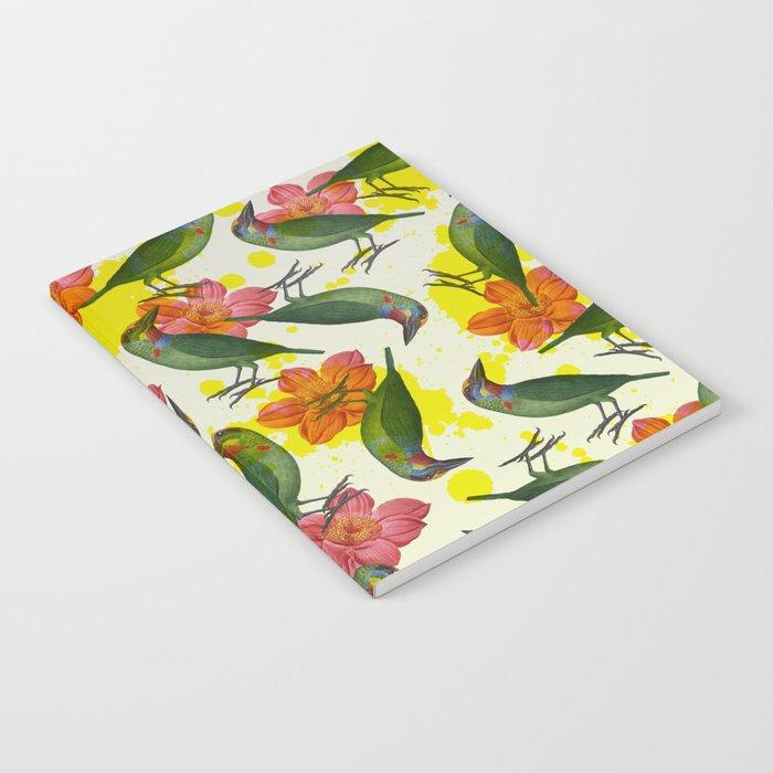 MUSAAN Notebook