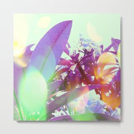 Summer Sunlight Metal Print