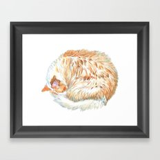 Sundance the Cat Framed Art Print
