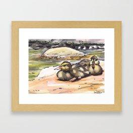 baby ducks Framed Art Print