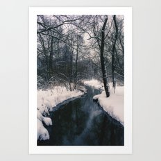 Almost frozen Art Print