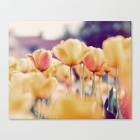 tulips Canvas Prints featuring Tulips by elle moss