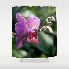 Queen of Flowers Shower Curtain