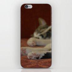 Cat Paws iPhone & iPod Skin