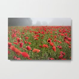 A field of red poppies on a misty morning. Metal Print