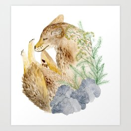 Sleeping Coyote Art Print