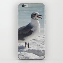 Laughing Gull iPhone Skin