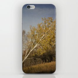 Leaning Uphill iPhone Skin