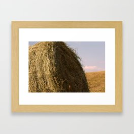 The round hay bale Framed Art Print