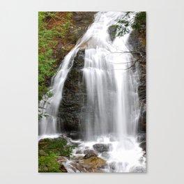 Moss Glen Falls - Stowe, VT Canvas Print