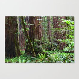 Cathedral of Giants Canvas Print