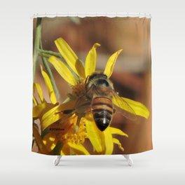 Desert Sunflower Pollen Picker Shower Curtain