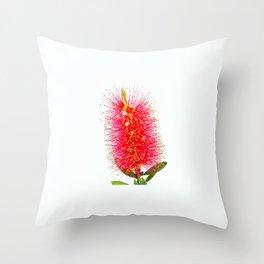 Australian Bottlebrush Throw Pillow