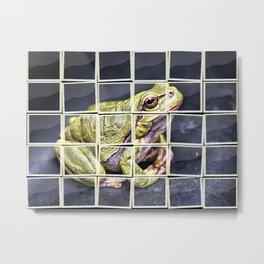 The InFocus Happy Frog Collection VII Metal Print