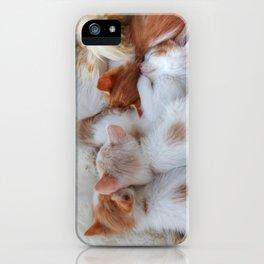 Little Balls of Fur! iPhone Case