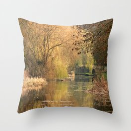 Tranquil days Throw Pillow