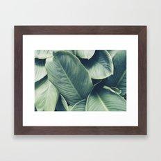 NATURE - GREEN - LEAVES - VEGETATION Framed Art Print