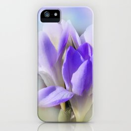 the beauty of a summerday -72- iPhone Case