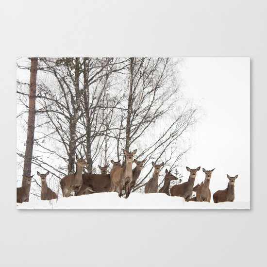 We See You Canvas Print