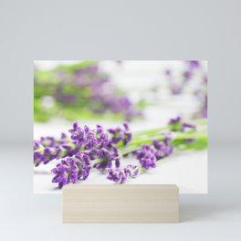 #Lavender #beauty #herb #still #life Mini Art Print