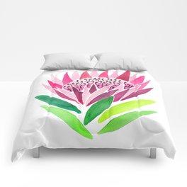 Protea Comforters