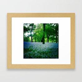 Violet Fields 2 Framed Art Print