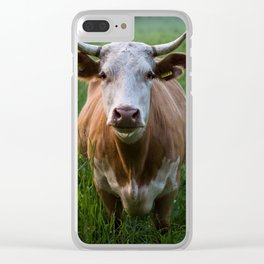 COW - FIELD - GREEN - VALLEY - NATURE - PHOTOGRAPHY - LANDSCAPE Clear iPhone Case
