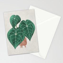 Anthurium clarinervium (potted) Stationery Cards