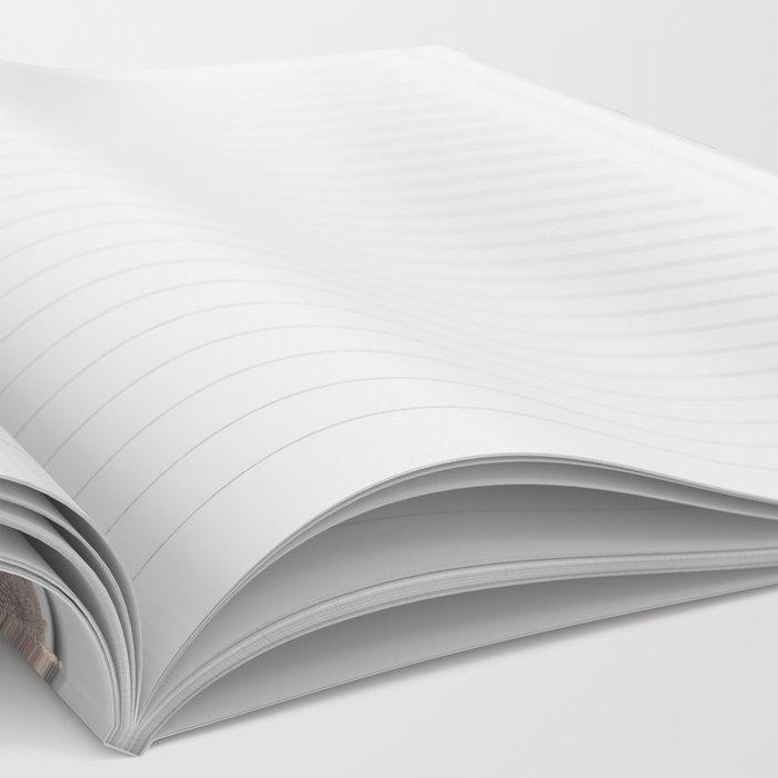 Level Notebook