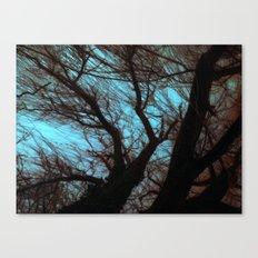 Under the willow ~ Aqua Canvas Print