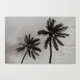 Moody Palm Trees Canvas Print