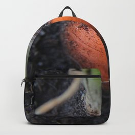 Carrot Exposed. Backpack