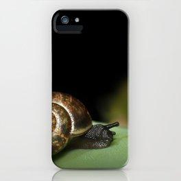Garden snail iPhone Case