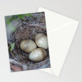 Horned lark nest and eggs - Yellowstone National Park Stationery Cards