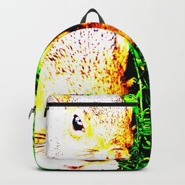 The many faces of Squirrel 1 Backpack
