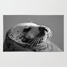 Howth Harbour Seal Rug