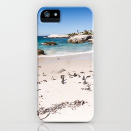 Penguins on Boulders Beach in Cape Town, South Africa iPhone Case