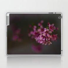 Kyoto Night Sakura, Japan 2015 Laptop & iPad Skin
