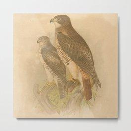 Vintage Bird Neck Gator Falcons Vintage Birds Falcon Metal Print