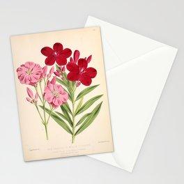 Nerium Oleander Vintage Scientific Floral Illustration Stationery Cards