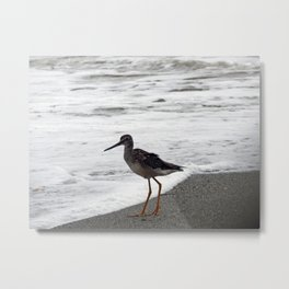 Greater Yellowlegs Watches the Surf Metal Print