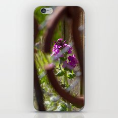Iron and Purple Flowers iPhone & iPod Skin