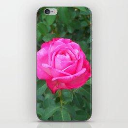 Floral Print 100 iPhone Skin