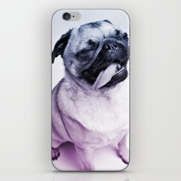 color pug iPhone Skin