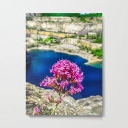 Pink Flower. Metal Print