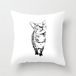 Tiny the Cat Throw Pillow