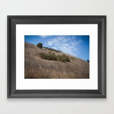 A Field Summer Framed Art Print