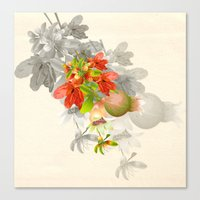 pomegranate Canvas Prints featuring Pomegranate. by Nato Gomes